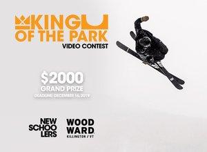 King of the Park - Killington