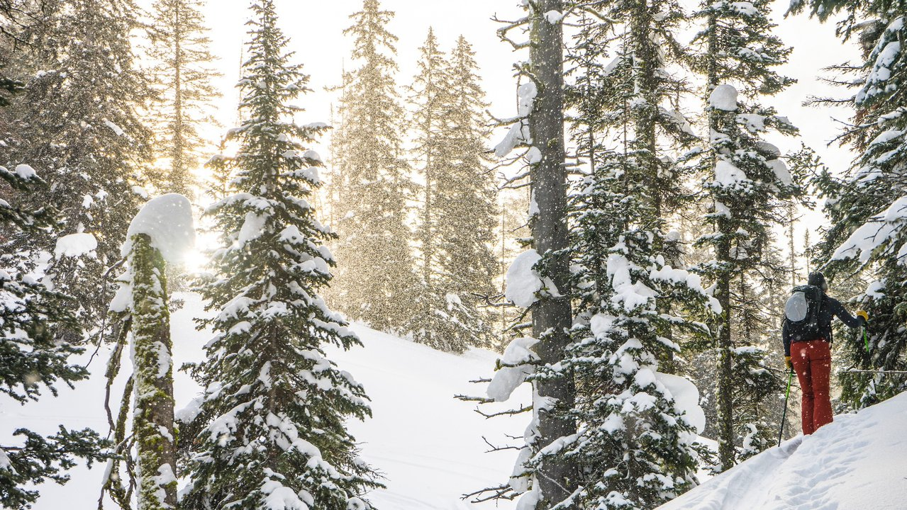 Backcountry Skiing Tips and Tricks