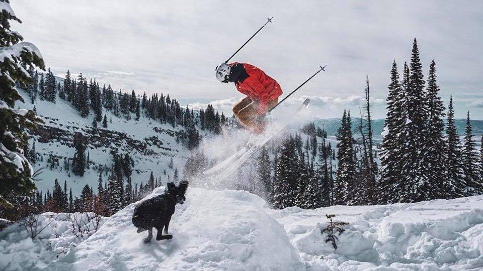 Ski Pow 'Till the Dog Poop Shows